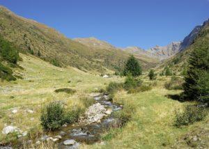 Pascoli e boschi nell'Alta Val Grande